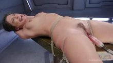 Multiple Scenes, Multiple Forced Orgasms (VIC)