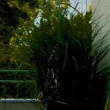 Jessica Chastain - No Bra