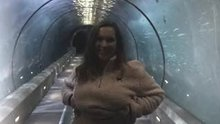 Titties in the shark tunnel